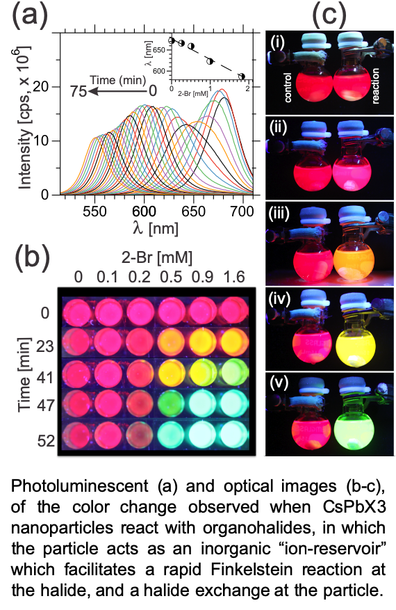 "Photoluminescent (a) and optical images (b-c), of the color change observed when CsPbX3 nanoparticles react with organohalides, in which the particle acts as an inorganic ""ion-reservoir"" which facilitates a rapid Finkelstein reaction at the halide, and a halide exchange at the particle."